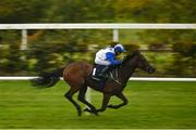 17 October 2020; Camorra, with Sam Ewing up, on their way to winning the Manguard Plus Handicap at Leopardstown Racecourse in Dublin. Photo by Seb Daly/Sportsfile