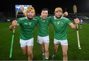 13 December 2020; Limerick players, from left, Tom Morrissey, Graeme Mulcahy and Adrian Breen following the GAA Hurling All-Ireland Senior Championship Final match between Limerick and Waterford at Croke Park in Dublin. Photo by Stephen McCarthy/Sportsfile