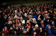 16 February 2020; Supporters in the main stand celebrate a late Wexford point during the Allianz Hurling League Division 1 Group B Round 3 match between Wexford and Kilkenny at Chadwicks Wexford Park in Wexford. Photo by Ray McManus/Sportsfile