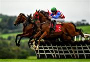 8 September 2020; Bigz Belief, right, with Dillon Maxwell up, jumps the third alongside Sister Eliza, left, with Denis O'Regan up, Poets Touch, with Darragh O'Keeffe up, and Crassus, hidden, with Sean Flanagan up, during the Sanctuary Synthetics 3-Y-O Maiden Hurdle at Punchestown Racecourse in Kildare. Photo by Seb Daly/Sportsfile
