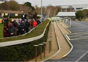 28 December 2020; A view of horses in the parade ring and empty public areas prior to the Tote.ie Maiden Hurdle on day three of the Leopardstown Christmas Festival at Leopardstown Racecourse in Dublin. Photo by Seb Daly/Sportsfile