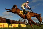 1 January 2021; Jockey David Mullins is unseated from his mount Brahma Bull during the Savills New Year's Day Steeplechase at Tramore Racecourse in Waterford. Photo by Seb Daly/Sportsfile