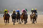 11 January 2021; Falak, with Colin Keane up, pink silks, lead the field on their way to winning the Crowne Plaza Hotel Dundalk Handicap DIV I at Dundalk Stadium, in Louth. Photo by Seb Daly/Sportsfile