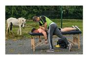 """18 July 2020; Rubbing shoulders with the horsey set. An outdoor physio session attracts a curious onlooker – a Bray wanderer, a mare uisce? Strange times indeed. For the record, David Keogh from the Thomas Davis club is the player on the treatment table and Carl O'Toole is the team physio giving him a good old pummelling. Photo by Ramsey Cardy/Sportsfile This image may be reproduced free of charge when used in conjunction with a review of the book """"A Season of Sundays 2020"""". All other usage © Sportsfile"""