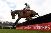 6 February 2021; Chacun Pour Soi, with Paul Townend up, jumps the last on their way to winning the Ladbrokes Dublin Steeplechase on day 1 of the Dublin Racing Festival at Leopardstown Racecourse in Dublin. Photo by Harry Murphy/Sportsfile