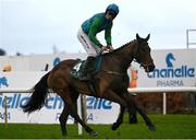 6 February 2021; Kilcruit, with Patrick Mullins up, after winning the Goffs Future Stars (C & G) I.N.H. Flat Race on day 1 of the Dublin Racing Festival at Leopardstown Racecourse in Dublin. Photo by Harry Murphy/Sportsfile