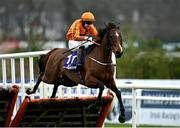 7 February 2021; Heaven Help Us, with Richard Condon up, jumps the last on their way to winning the Irish Stallion Farms EBF Paddy Mullins Mares Handicap Hurdle on day two of the Dublin Racing Festival at Leopardstown Racecourse in Dublin. Photo by Seb Daly/Sportsfile