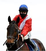 7 February 2021; Jockey Jack Kennedy and Quilixios after winning the Tattersalls Ireland Spring Juvenile Hurdle on day two of the Dublin Racing Festival at Leopardstown Racecourse in Dublin. Photo by Seb Daly/Sportsfile
