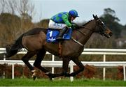 7 February 2021; Appreciate It, with Paul Townend up, on their way to winning the Chanelle Pharma Novice Hurdle on day two of the Dublin Racing Festival at Leopardstown Racecourse in Dublin. Photo by Seb Daly/Sportsfile