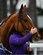 7 February 2021; Monkfish following victory in the Flogas Novice Steeplechase on day two of the Dublin Racing Festival at Leopardstown Racecourse in Dublin. Photo by Seb Daly/Sportsfile