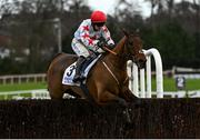 6 February 2021; Darver Star, with Jonathan Moore up, jumps the last during the Patrick Ward & Co. Solicitors Irish Arkle Novice Steeplechase on day 1 of the Dublin Racing Festival at Leopardstown Racecourse in Dublin. Photo by Harry Murphy/Sportsfile
