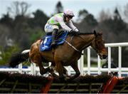 6 February 2021; Saldier, with Paul Townend up, jumps the last during the Chanelle Pharma Irish Champion Hurdle on day 1 of the Dublin Racing Festival at Leopardstown Racecourse in Dublin. Photo by Harry Murphy/Sportsfile