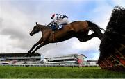 6 February 2021; Stattler, with Danny Mullins up, jump the last, first time round, during the Nathaniel Lacy & Partners Solicitors `€50,000 Cheltenham Bonus For Stable Staff` Novice Hurdle on day 1 of the Dublin Racing Festival at Leopardstown Racecourse in Dublin. Photo by Harry Murphy/Sportsfile