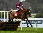 6 February 2021; The Very Man, with Conor McNamara up, jumps the last during the Ladbrokes Hurdle (Extended Handicap Hurdle) on day 1 of the Dublin Racing Festival at Leopardstown Racecourse in Dublin. Photo by Harry Murphy/Sportsfile