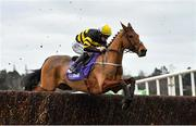 7 February 2021; Macgiloney, with Sean Flanagan up, during the Flogas Novice Steeplechase on day two of the Dublin Racing Festival at Leopardstown Racecourse in Dublin. Photo by Seb Daly/Sportsfile