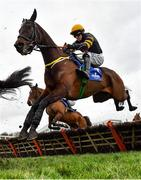 7 February 2021; Cask Mate, with Sean Flanagan up, during the Chanelle Pharma Novice Hurdle on day two of the Dublin Racing Festival at Leopardstown Racecourse in Dublin. Photo by Seb Daly/Sportsfile