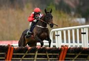 7 February 2021; Saint Sam, with Danny Mullins up, during the Tattersalls Ireland Spring Juvenile Hurdle on day two of the Dublin Racing Festival at Leopardstown Racecourse in Dublin. Photo by Seb Daly/Sportsfile