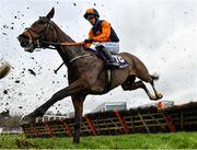 7 February 2021; Tucanae, with Bryan Cooper up, during the Irish Stallion Farms EBF Paddy Mullins Mares Handicap Hurdle on day two of the Dublin Racing Festival at Leopardstown Racecourse in Dublin. Photo by Seb Daly/Sportsfile