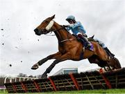 7 February 2021; Global Equity, with JJ Slevin up, during the Irish Stallion Farms EBF Paddy Mullins Mares Handicap Hurdle on day two of the Dublin Racing Festival at Leopardstown Racecourse in Dublin. Photo by Seb Daly/Sportsfile