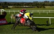 21 February 2021; Espanito Bello, with Mark Bolger up, almost falls after clearing the last ahead of eventual winner Coko Beach, with Jack Kennedy up, on their way to finishing second in the Ladbrokes Ten Up Novice Steeplechase at Navan Racecourse in Meath. Photo by David Fitzgerald/Sportsfile