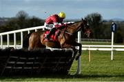 21 February 2021; Tiger Roll, with Keith Donoghue up, jumps the last during the Ladbrokes Ireland Boyne hurdle at Navan Racecourse in Meath. Photo by David Fitzgerald/Sportsfile