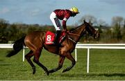 21 February 2021; Tiger Roll, with Keith Donoghue up, during the Ladbrokes Ireland Boyne hurdle at Navan Racecourse in Meath. Photo by David Fitzgerald/Sportsfile