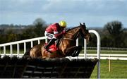 21 February 2021; Tiger Roll, with Keith Donoghue up, clear the last during the Ladbrokes Ireland Boyne hurdle at Navan Racecourse in Meath. Photo by David Fitzgerald/Sportsfile