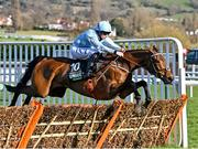 16 March 2021; Honeysuckle, with Rachael Blackmore up, jump the last on their way to winning The Unibet Champion Hurdle Challenge Trophy on day 1 of the Cheltenham Racing Festival at Prestbury Park in Cheltenham, England. Photo by Hugh Routledge/Sportsfile
