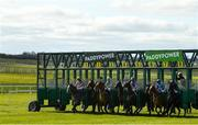 21 March 2021; Runners and riders leave the stalls for the start of the Irish Stallion Farms EBF Maiden at The Curragh Racecourse in Kildare. Photo by Seb Daly/Sportsfile