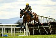 5 April 2021; Busselton, with JJ Slevin up, jumps the last, first time round, on their way to fourth the Rathbarry & Glenview Studs Juvenile Hurdle during day three of the Fairyhouse Easter Festival at the Fairyhouse Racecourse in Ratoath, Meath. Photo by Harry Murphy/Sportsfile