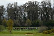 7 April 2021; Runners and riders during the Gowran Park Golf Club Maiden at Gowran Park Racecourse in Kilkenny. Photo by Harry Murphy/Sportsfile