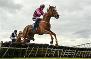 13 April 2021; Now Where Or When, with JJ Slevin up, clear the last on their way to winning the www.fairyhouse.ie Maiden Division Two hurdle at Fairyhouse Racecourse in Ratoath, Meath. Photo by David Fitzgerald/Sportsfile