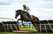13 April 2021; Alkaa Lion, with Brid O'Neill up, in action at Fairyhouse Racecourse in Ratoath, Meath. Photo by David Fitzgerald/Sportsfile