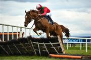 13 April 2021; Mr Palm, with Adam Williams up, in action at Fairyhouse Racecourse in Ratoath, Meath. Photo by David Fitzgerald/Sportsfile