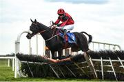 13 April 2021; Ballinoe Biden, with Joseph Kelly up, in action at Fairyhouse Racecourse in Ratoath, Meath. Photo by David Fitzgerald/Sportsfile