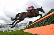 27 April 2021; Allaho, with Rachael Blackmore up, clear the last on their way to finishing second in the William Hill Champion Steeplechase during day one of the Punchestown Festival at Punchestown Racecourse in Kildare. Photo by David Fitzgerald/Sportsfile
