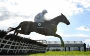 30 April 2021; Honeysuckle, with Rachael Blackmore up, jumps the last on their way to winning the Paddy Power Champion Hurdle during day four of the Punchestown Festival at Punchestown Racecourse in Kildare. Photo by Harry Murphy/Sportsfile
