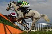1 May 2021; Scoir Mear, with Simon Torrens up, jumps the last during the Palmerstown House Pat Taaffe Handicap Steeplechase on day five of the Punchestown Festival at Punchestown Racecourse in Kildare. Photo by Seb Daly/Sportsfile