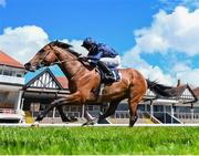 7 May 2021; Armory, with Ryan Moore up, on their way to winning The Melodi Media Huxley Stakes at Chester Racecourse, England. Photo by Hugh Routledge/Sportsfile