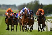 23 May 2021; She's Trouble, centre, with Kevin Manning up, on their way to winning the Tally Ho Stud Irish EBF Fillies Maiden during day two of the Tattersalls Irish Guineas Festival at The Curragh Racecourse in Kildare. Photo by Seb Daly/Sportsfile