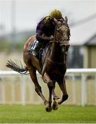 23 May 2021; Foveros, with Wayne Lordan up, on their way to winning the Heed Your Hunch At Betway Handicap during day two of the Tattersalls Irish Guineas Festival at The Curragh Racecourse in Kildare. Photo by Seb Daly/Sportsfile