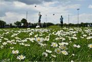 30 May 2021; A general view of daisies growing on a training pitch as Laois goalkeepers Matthew Byron, left, and Niall Corbet warm-up before the Allianz Football League Division 2 South Round 3 match between Laois and Kildare at MW Hire O'Moore Park in Portlaoise, Laois. Photo by Piaras Ó Mídheach/Sportsfile