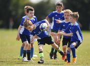 13 July 2021; Euan Petrie, age 7, in action during the Bank of Ireland Leinster Rugby Summer Camp at Greystones RFC in Greystones, Wicklow. Photo by Matt Browne/Sportsfile