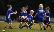 13 July 2021; Cathal Fitzpatrick, age 6, in action during the Bank of Ireland Leinster Rugby Summer Camp at Greystones RFC in Greystones, Wicklow. Photo by Matt Browne/Sportsfile