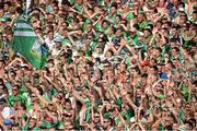 14 July 2013; Supporters during the game. Munster GAA Hurling Senior Championship Final, Limerick v Cork, Gaelic Grounds, Limerick. Picture credit: Diarmuid Greene / SPORTSFILE