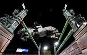 4 August 2021; Darragh Kenny of Ireland riding Cartello during the jumping individual final at the Equestrian Park during the 2020 Tokyo Summer Olympic Games in Tokyo, Japan. Photo by Stephen McCarthy/Sportsfile