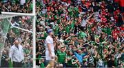 22 August 2021; Limerick supporters celebrate their side's third goal, scored by Gearóid Hegarty, during the GAA Hurling All-Ireland Senior Championship Final match between Cork and Limerick in Croke Park, Dublin. Photo by Piaras Ó Mídheach/Sportsfile