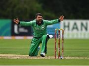 13 September 2021; Simi Singh of Ireland makes an appeal during match three of the Dafanews International Cup ODI series between Ireland and Zimbabwe at Stormont in Belfast. Photo by Seb Daly/Sportsfile