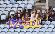 12 September 2021; Wexford supporters during the All-Ireland Premier Junior Camogie Championship Final match between Armagh and Wexford at Croke Park in Dublin. Photo by Ben McShane/Sportsfile