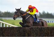 10 October 2021; Vado Forte, with Davy Russell up, jumps the last on their way to winning the Anglo Printers Rated Steeplechase at Limerick Racecourse in Patrickswell, Limerick. Photo by Seb Daly/Sportsfile